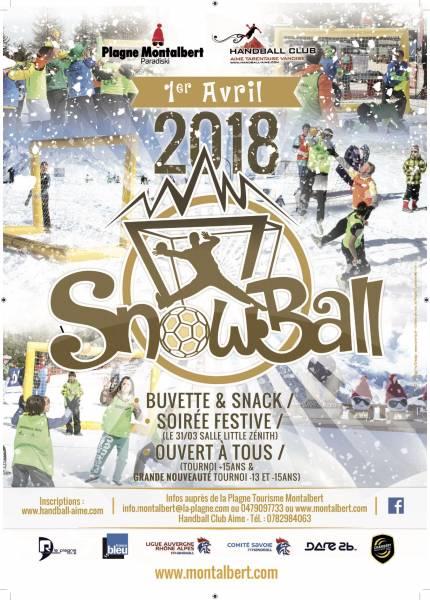 crealp-A3-snowball2018-10-11